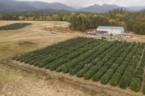 Leap-Farms-12-1024x575